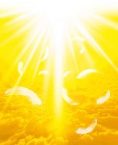 黄色の祈り