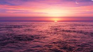ピンクの夜明けjpg