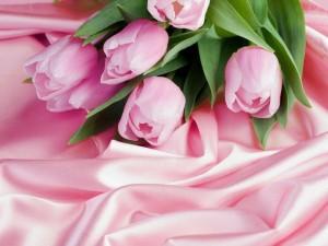 ピンクのty^リップ397755_397116643710900_248328335_n